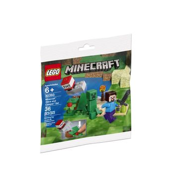 lego-minecraft-steve-and-creeper-set-014-30393_1